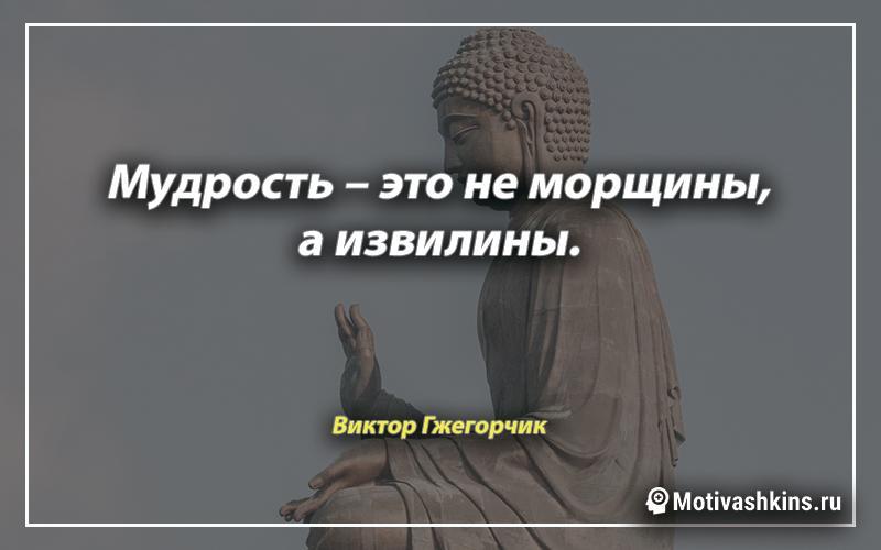 Мудрость – это не морщины, а извилины.