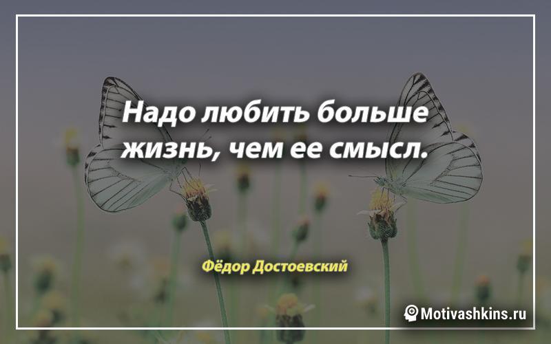 Надо любить больше жизнь, чем ее смысл.