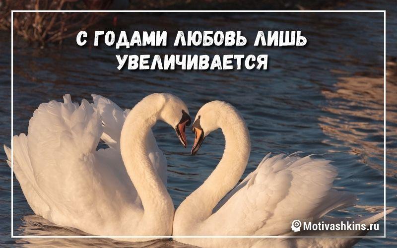 С годами любовь лишь увеличивается
